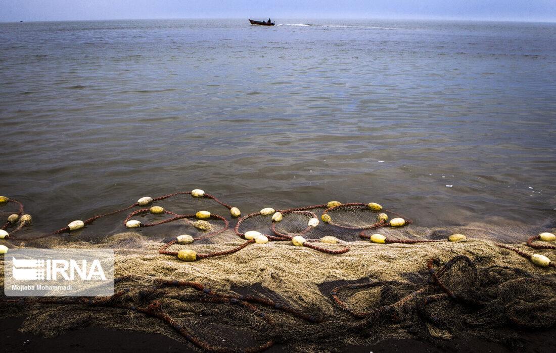 کاتالوگ ملی دریای خزر حاصل همکاری پنج کشور همسایه است