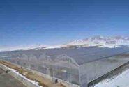 حمایت ۴۶۰میلیاردی بانک کشاورزی از مجتمع گلخانه ای هیدرو پونیک پرورش صیفی جات و توت فرنگی در استان کردستان
