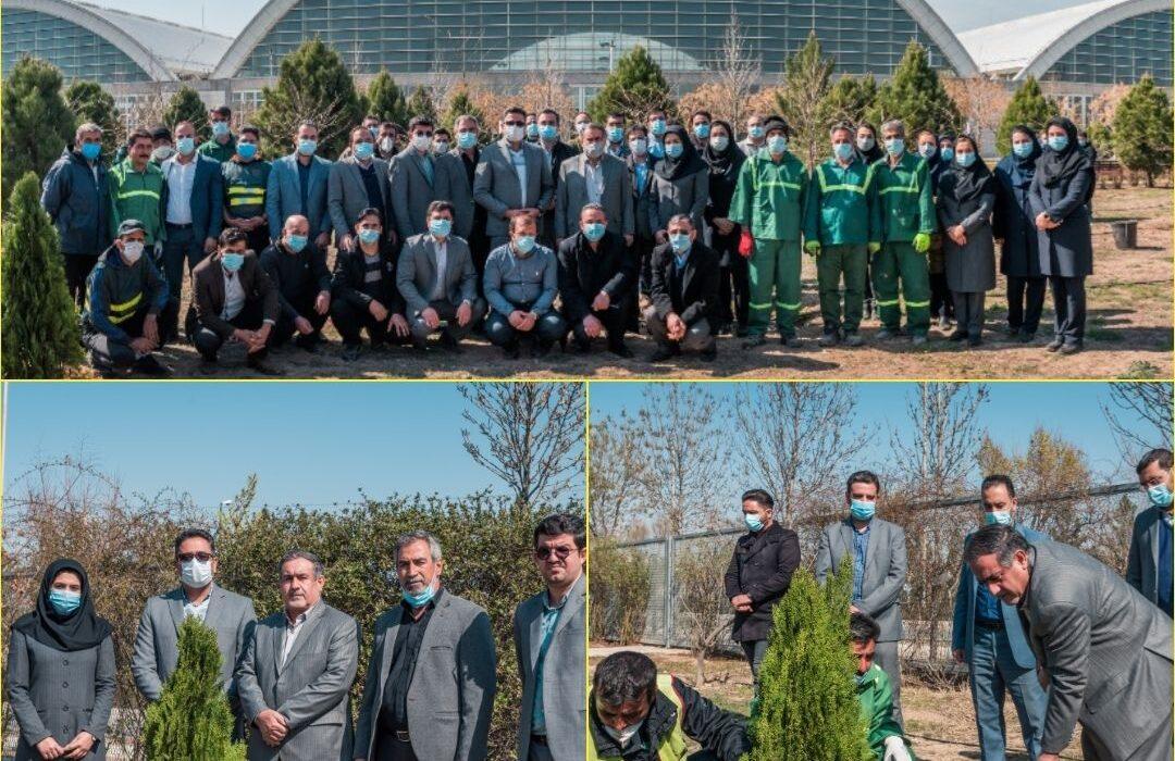 کاشت ۵ اصله درخت به مناسبت ۵ سالگی نمایشگاه بین المللی  شهرآفتاب