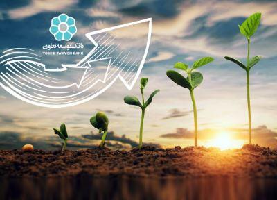 تسهیلات پرداختی بانک توسعه تعاون در طرح اشتغال روستایی و عشایری به بیش از ۲۴هزار میلیارد ریال رسید