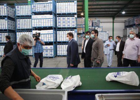دستور رئیس ستاد اجرایی فرمان امام برای ارسال کمکهای ویژه ضدکرونا به سیستان و بلوچستان به ارزش ۲۰ میلیارد تومان